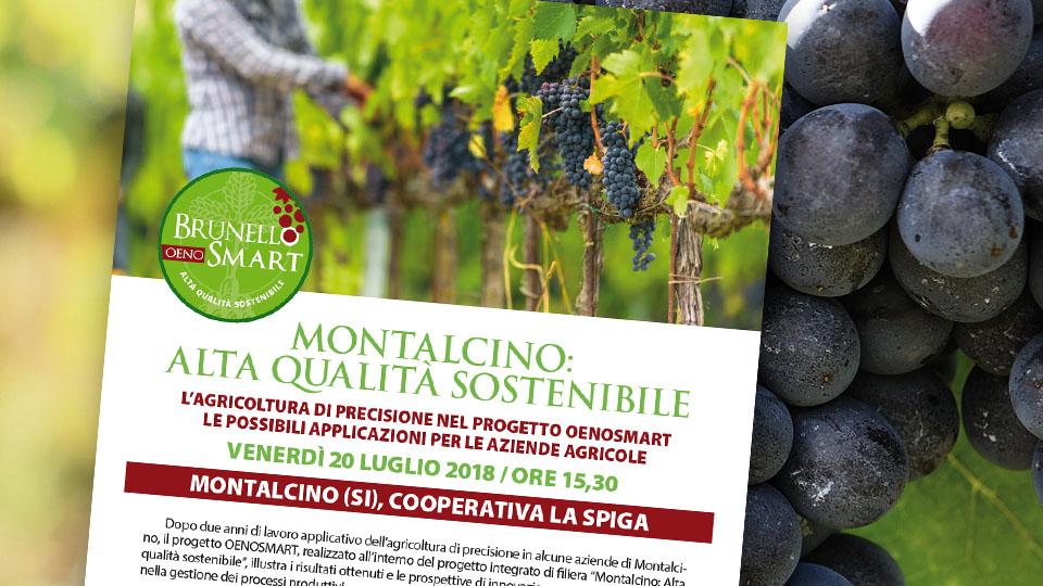 Montalcino: Alta qualità sostenibile. Appuntamento venerdì 20 luglio 2018